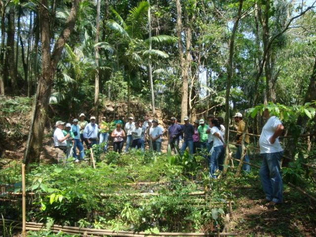 Visiting low cost tree nursery