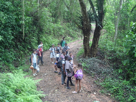 Students on the Rainforest trail.