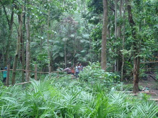 Tree nursery and students.