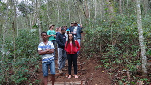 On the trail to see agroforestry plantations.