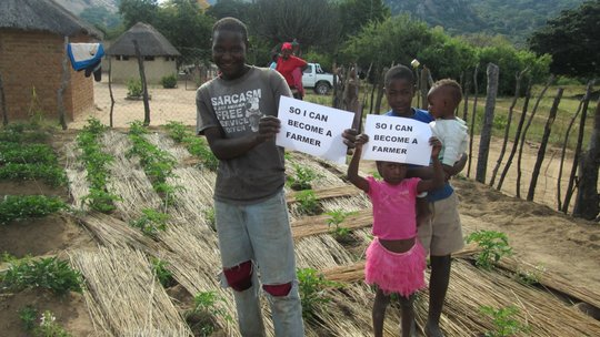 Children Will Eat Healthfully Thanks to Seeds