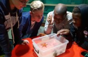 Support a Nursery for 150 Children in South Africa