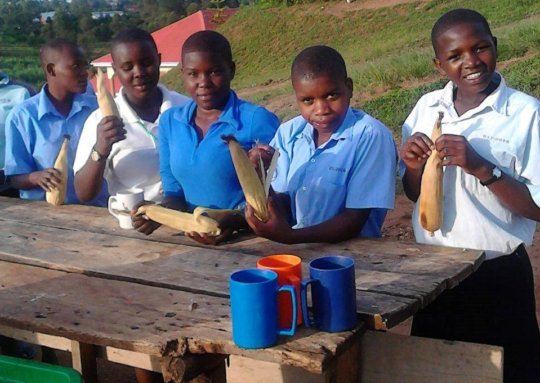 Students eating the maize they harvested