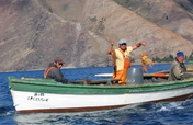 Preserving Chile's Ocean Treasures