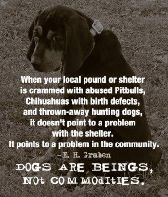 Meme regarding hunting dogs in animal control