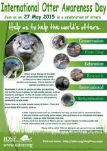 International Otter Survival Fund Poster (PDF)
