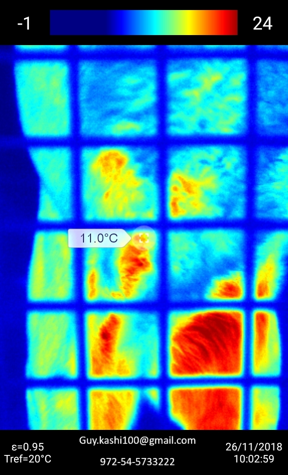 Thermo imaging of hindquarters