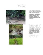 A_visit_to_Amin.pdf (PDF)