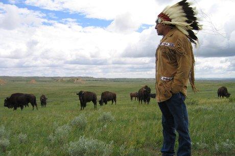 Provide Bison Meat to Lakota Elders on Pine Ridge