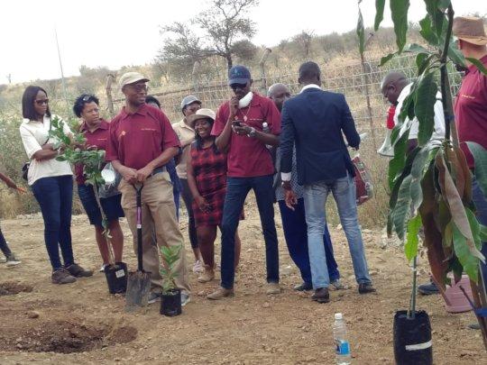 Bank of Namibia planting trees at Mammadu