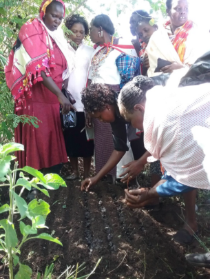 Women plant tree nursery to protect water sources