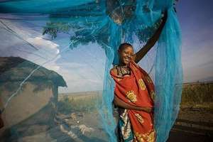 Insecticidal bed nets have helped several African