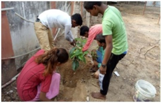 Plantation on Environment Day