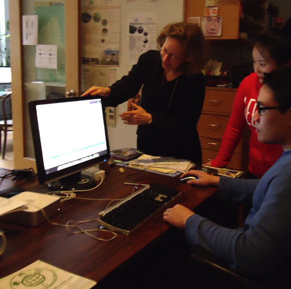 Interns helped inventory the Green Map Archive