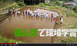 Traditional rice paddies are on the Green Map