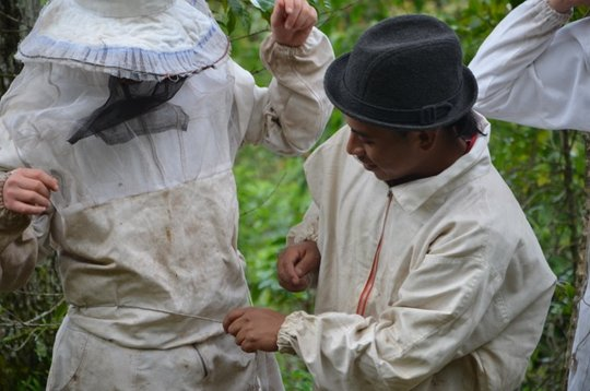 Bee Suits for Bee Tours