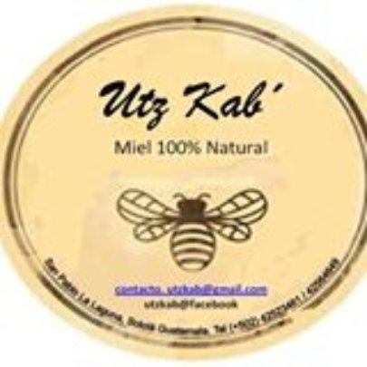 Utz Kab Logo