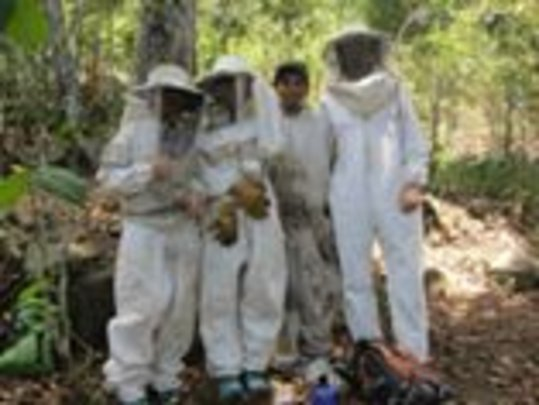 Visitors with the Bee Boys - We need more suits!