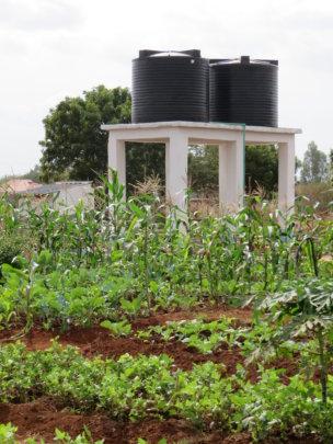 Garden plots and water storage