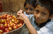 Health for 45 indigenous communities in Mexico