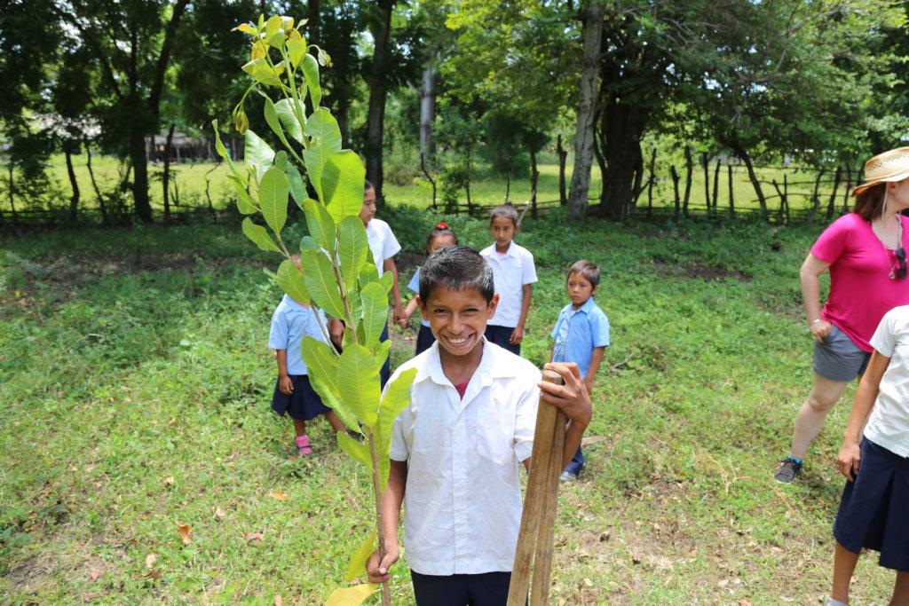 100,000 Fruit Trees for El Salvador