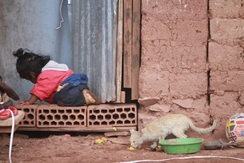 Safe water for 50 malnourished children in Cusco