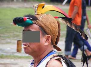 Artificial beak worn on traditional headgear