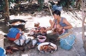 Poor women micro-enterprise development-Indonesia