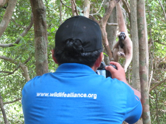 Sitheng snapping photos of Saranick and baby