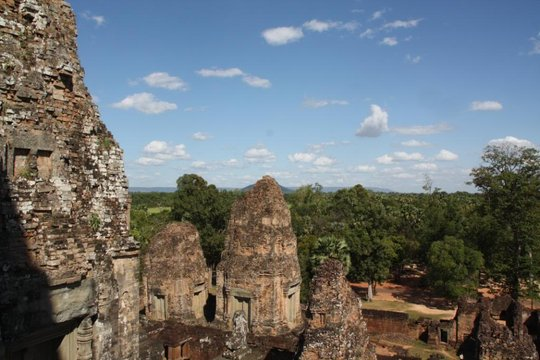 The Forest Surrounding Angkor