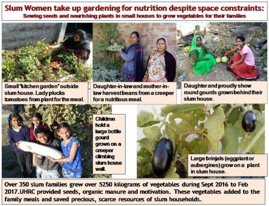 Slum Women take up gardening for nutrition