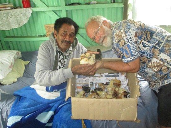 Yokimi and chickens for Kadavu!