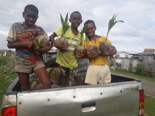 Village Children Planting Hybrid Coconuts