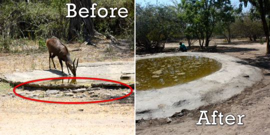 The great improvements on the water hole!