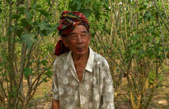 Tit Phua in his Jatropha plantation
