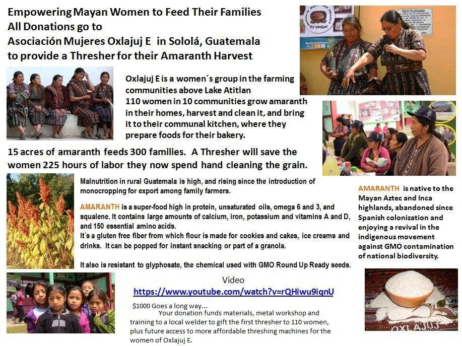 Empower Women to Feed their Families