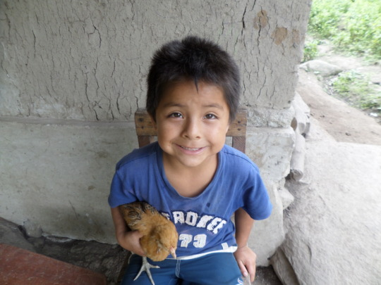 Carlos is showing off his young chicken from FTW