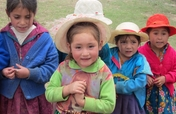 Sustainable Nutrition for 823+ Families in Peru