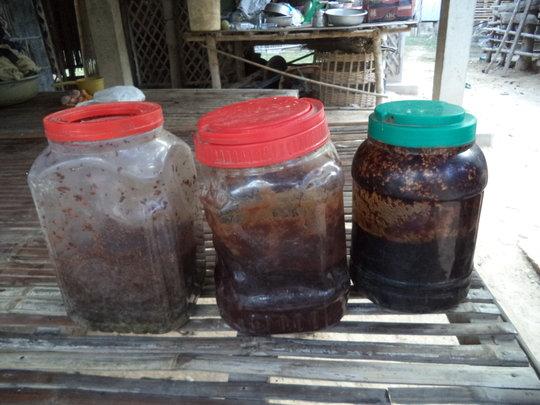 Honey Harvest - Farmer Khin Manith