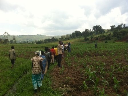 Women develop into Agriculture Cooperatives