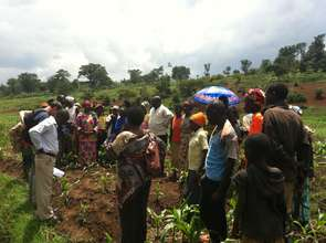 Women grouped into Agricultural Cooperatives