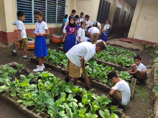 Gardening between school buildings in city