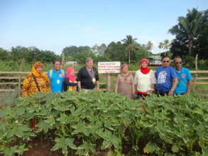 School garden assists daily school feeding program