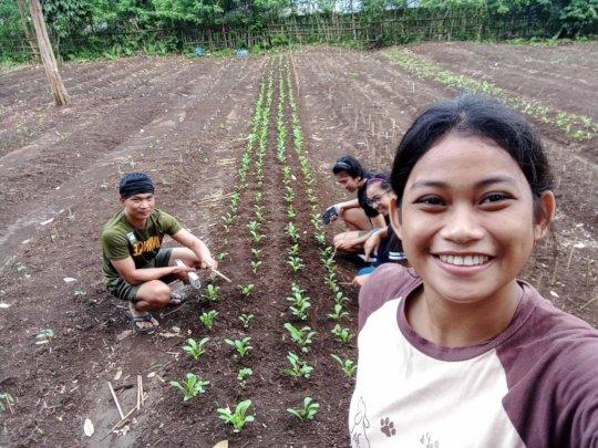 AAI-MSU agro students plant sustainable gardens