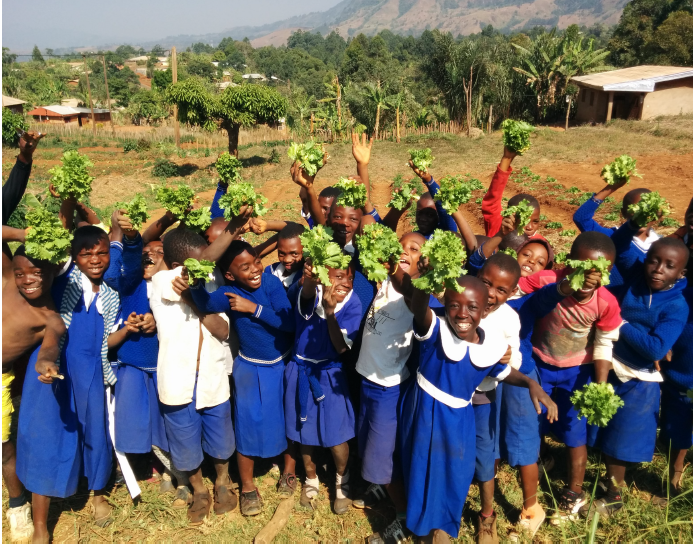 The students with their lettuce harvest