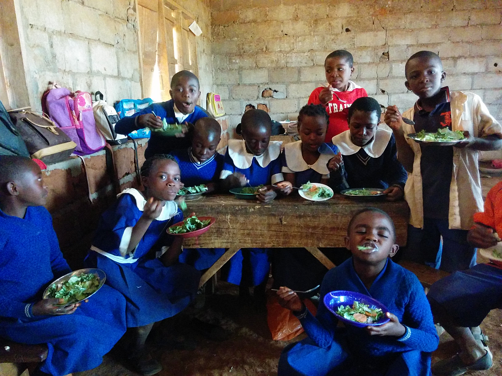 The students enjoying their salads
