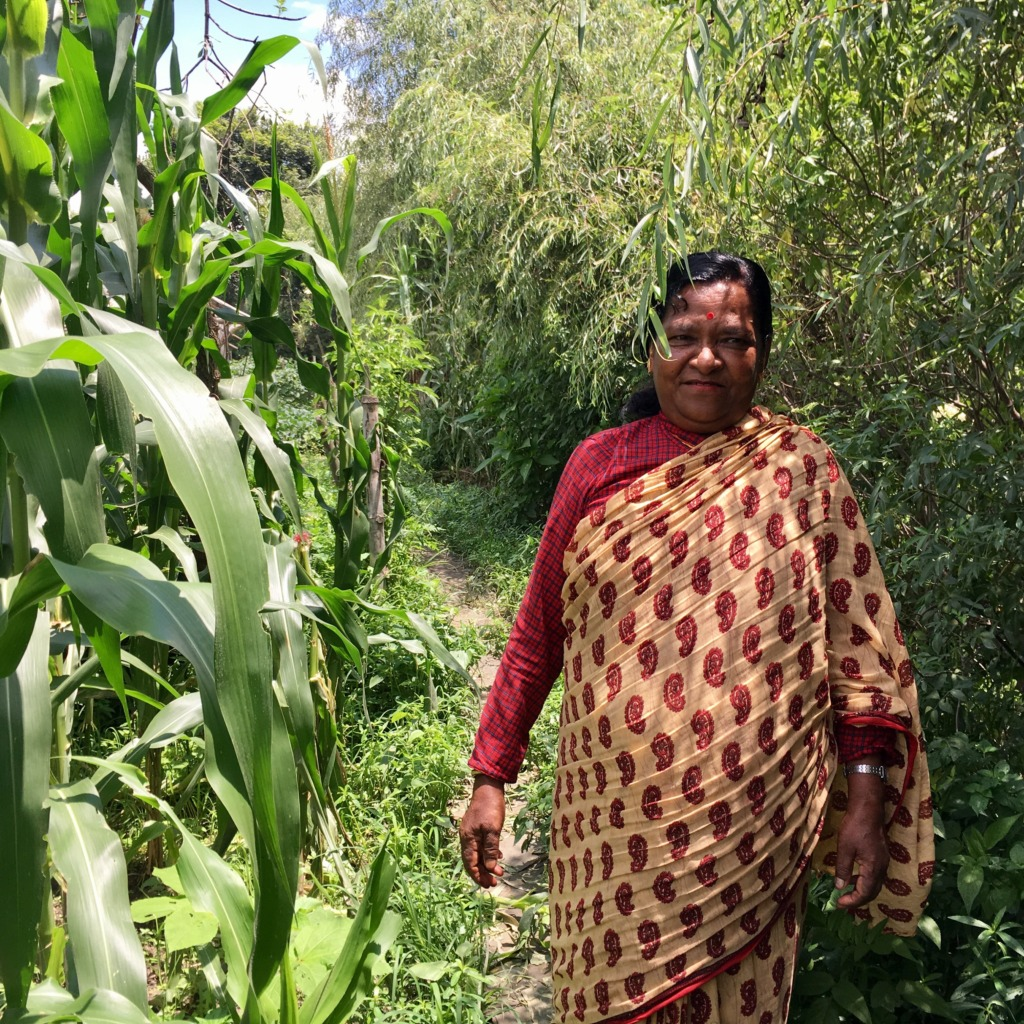Sanu restored her garden with GlobalGiving