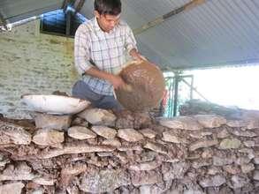 Govinda rebuilding