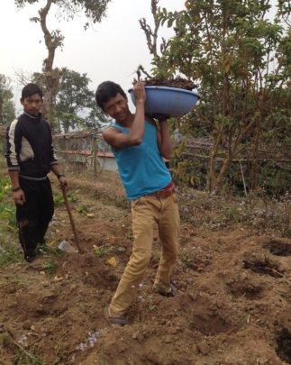 Govinda working the land