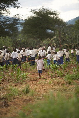 Educate 500 Orphans and Needy Children in Tanzania